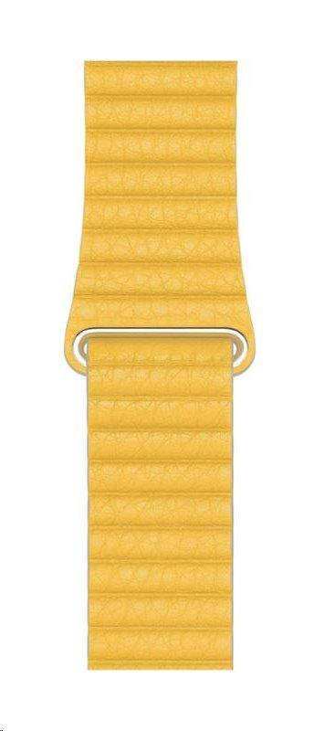 MXAD2ZM/A Apple Watch 44mm Meyer Leather Loop 190199413030